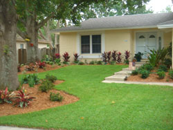 A Landscape Company Tampa Bay Customers Can Trust